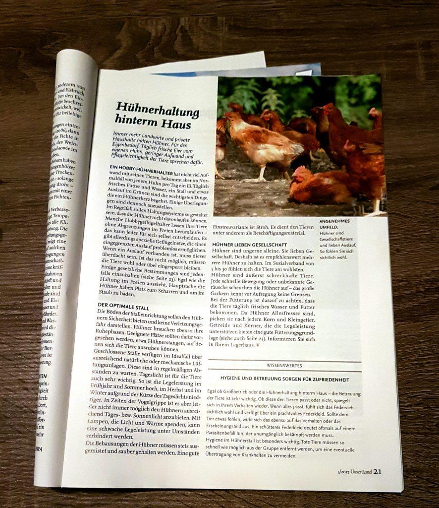 Artikel über Hühner im Garten.